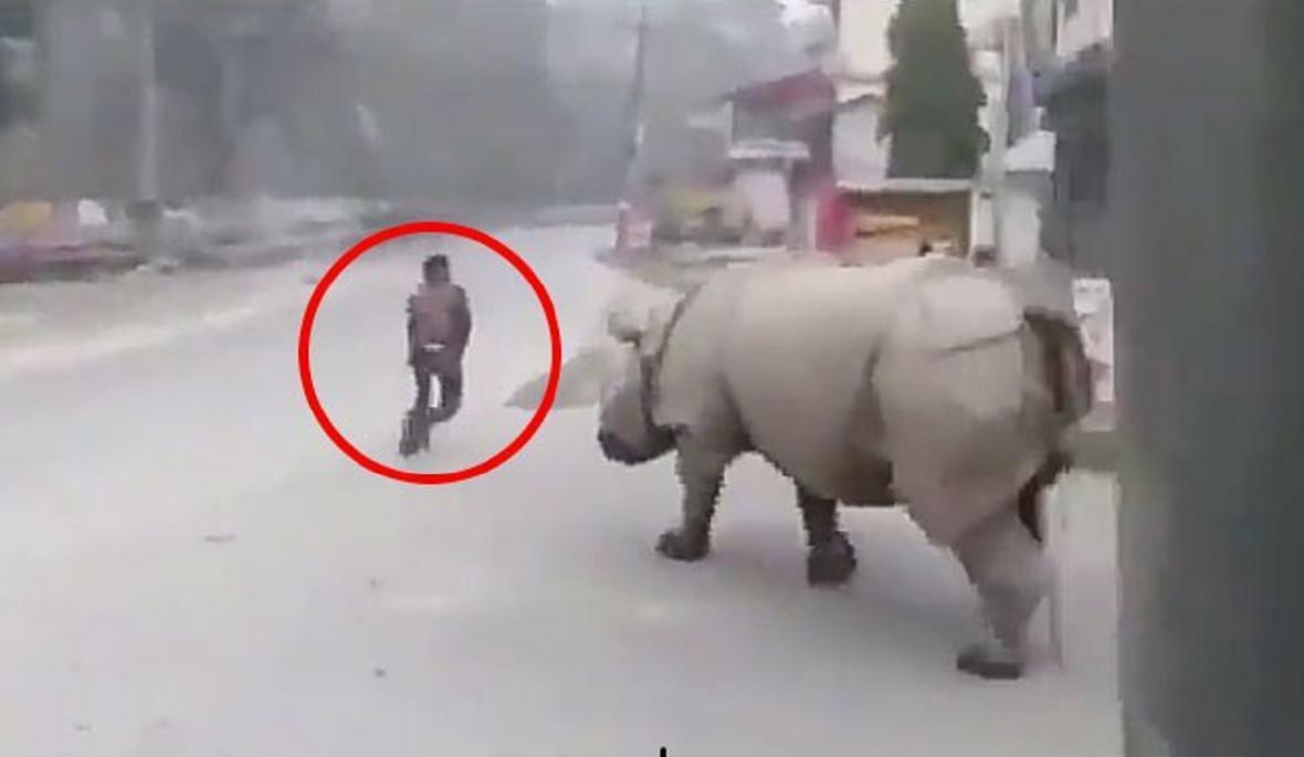 حمله کرگدن به شهروند نپالی در خیابان خلوت!