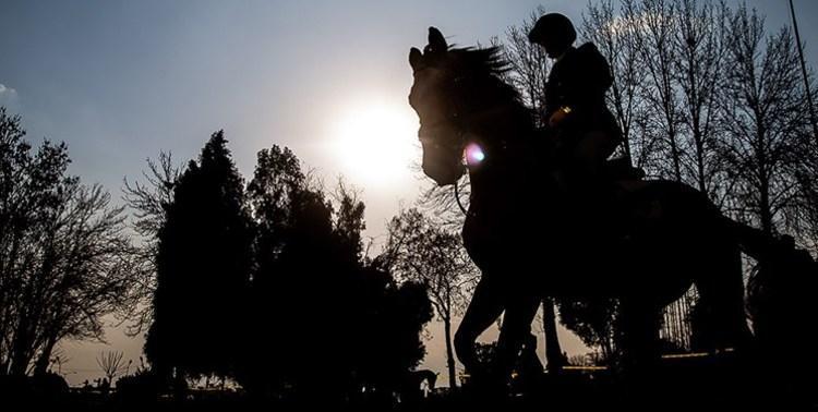 (عکس) اهدای زین اسب ایرانی با قدمت 120 ساله به اولین موزه اسب آسیا